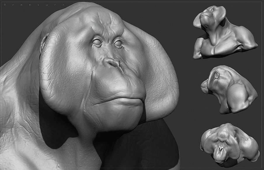 Primate_08_BM_905.jpg