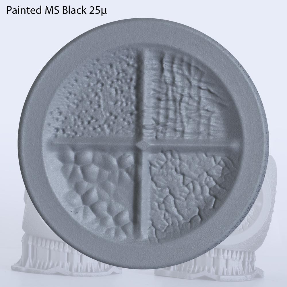 MS_Painted1.jpg