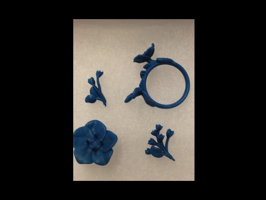 ring_05.jpg