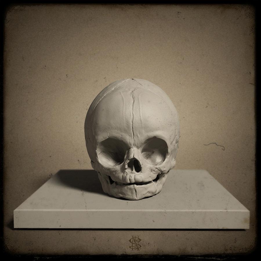 SkullPortFull2.jpg