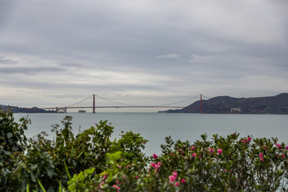 california-6279.jpg