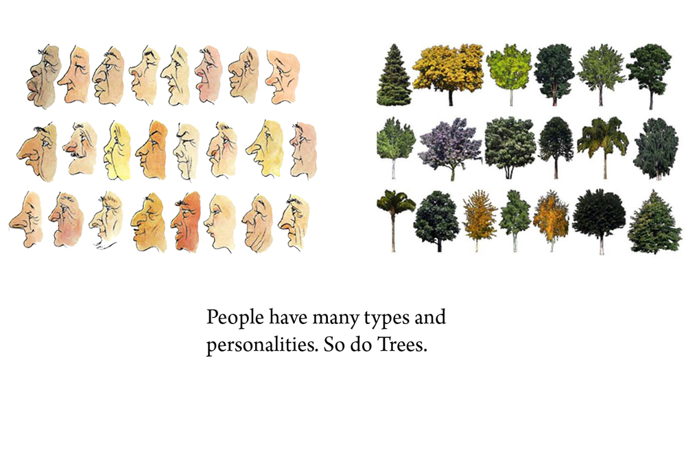 1-bunch-design-tree-people-diversity.jpg