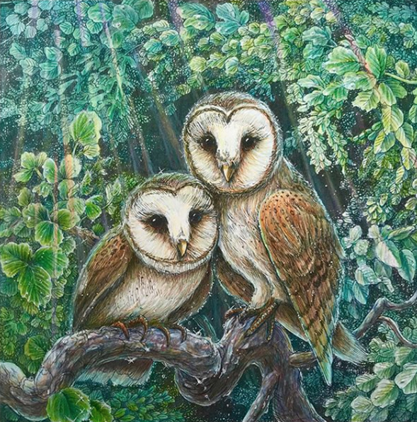 """I chose this as 1st place for its beautiful depth and magical light. The owls are exquisitely coloured with beautiful areas of light and shade. I love the way the raindrops sparkle on the branch and the light falls on the leaves. The whole picture has an ethereal quality to it""- Nikki Hodges"
