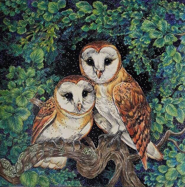 """I chose this as my 3rd place because it just invites you in. I love how the mossy branch has been coloured in a such a realistic way. The owls are realistic and beautifully coloured. The leaves are so pretty with their hints of a blue and the night sky sparkling behind really pulls this picture together."" -Nikki Hodges"