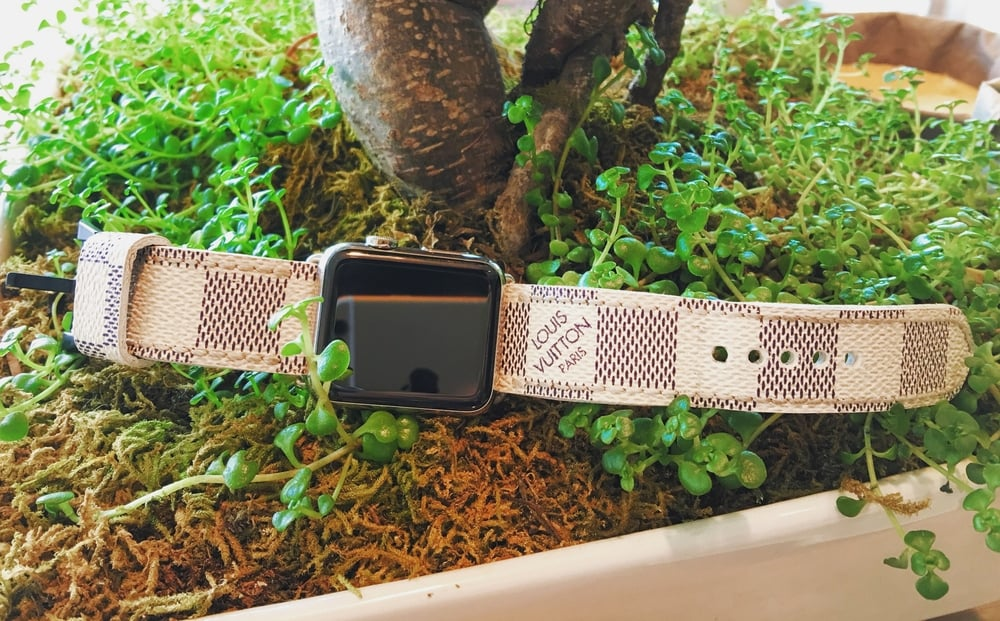 Luxury Apple Watch Band Louis Vuitton The Strap Smith