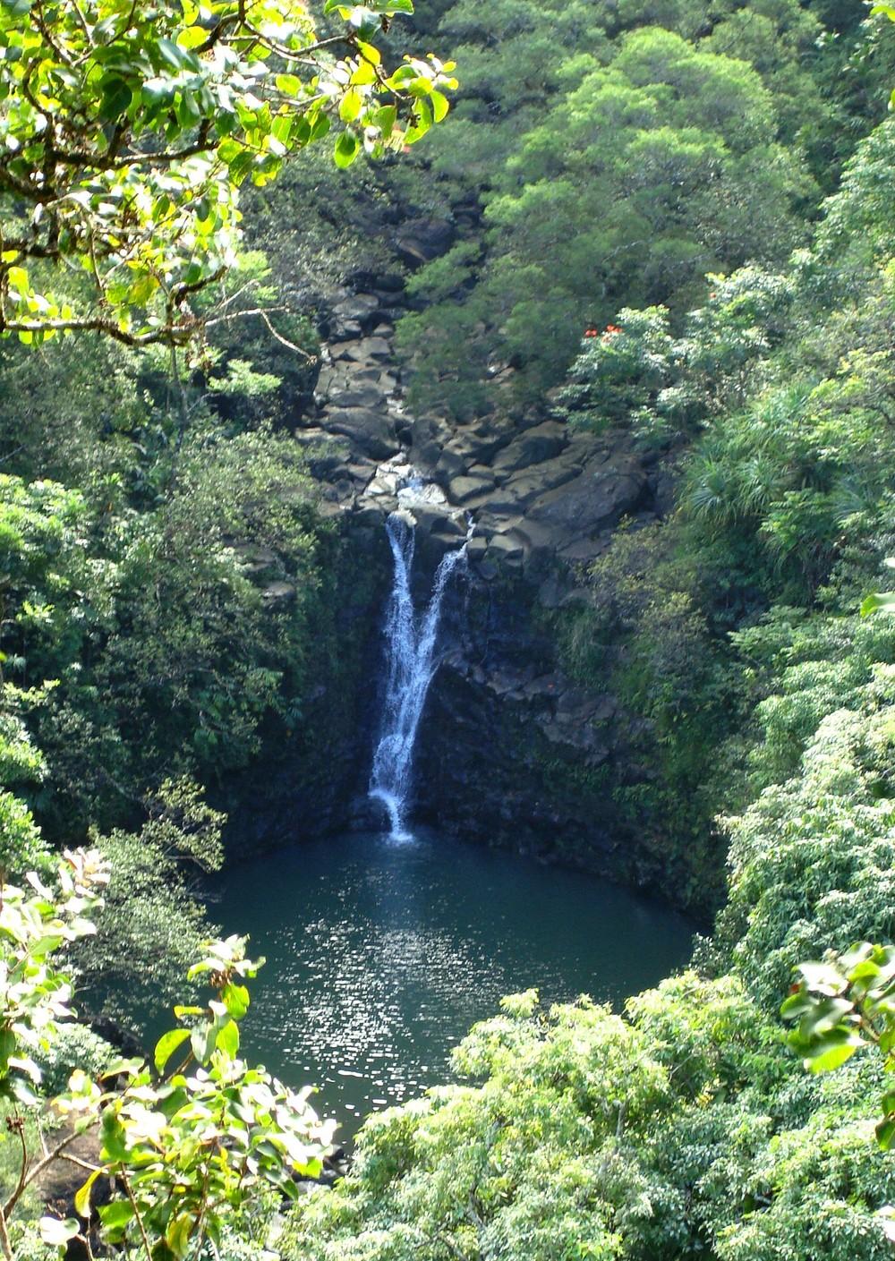 Maui January 2008 265.jpg