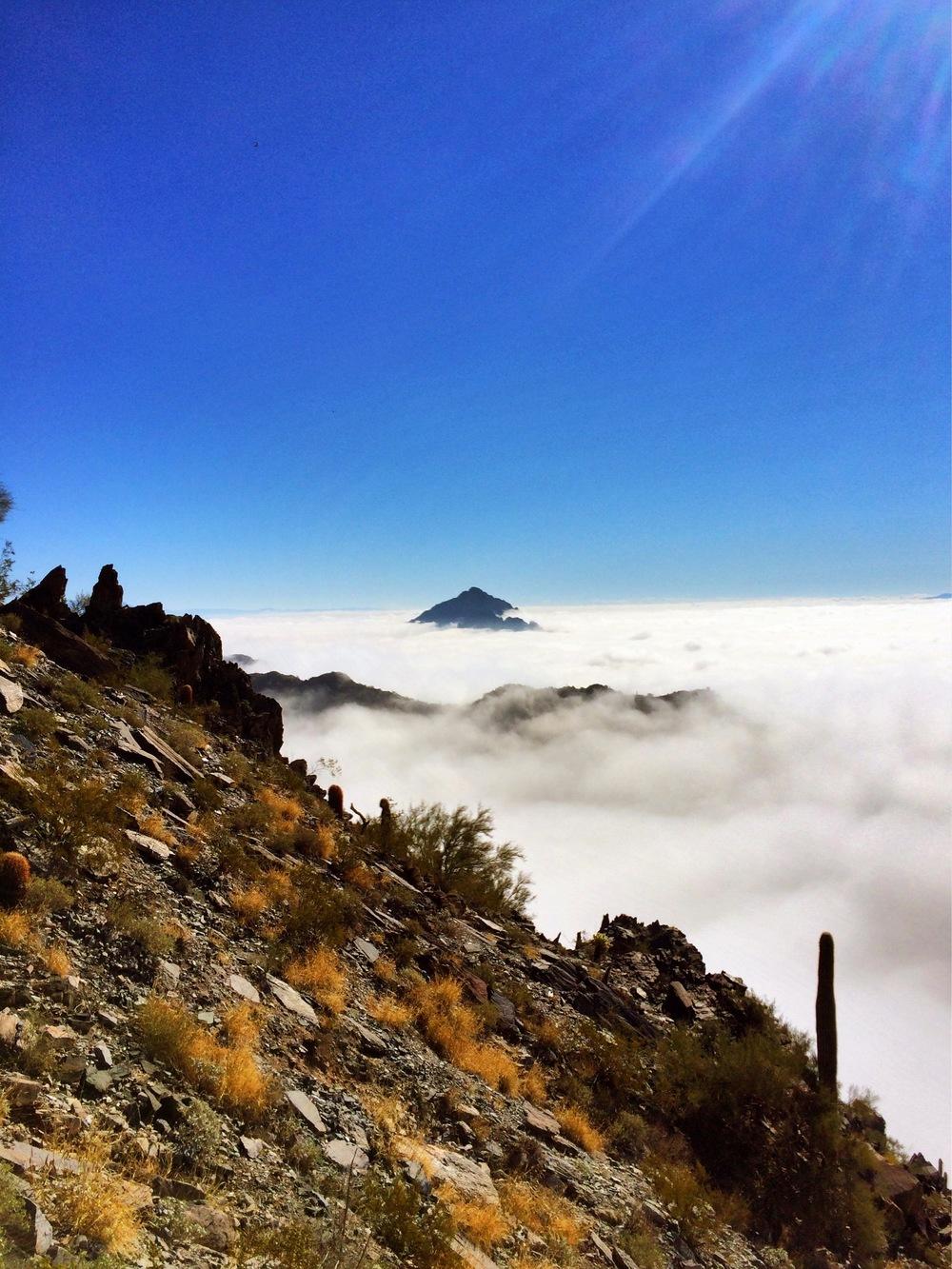 Fog at Piestewea Peak