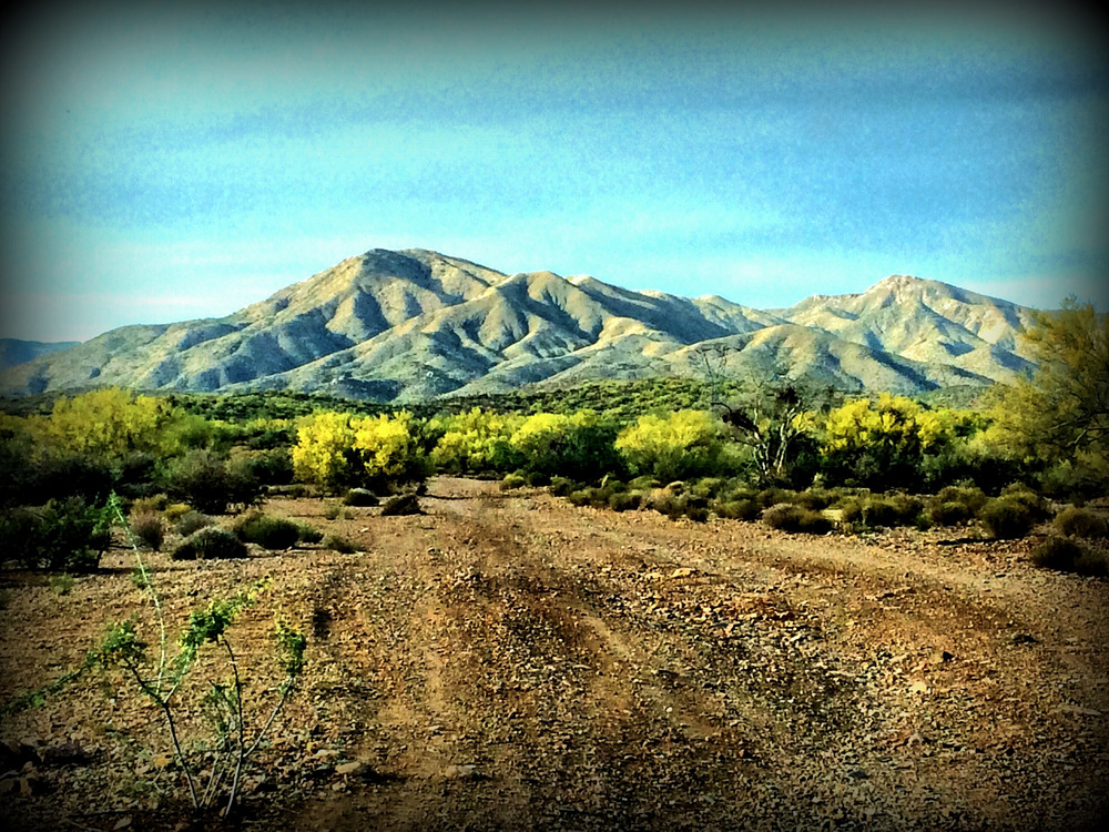 Southern Arizona