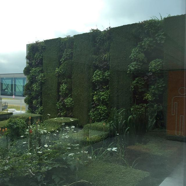 #vegetated #architecture