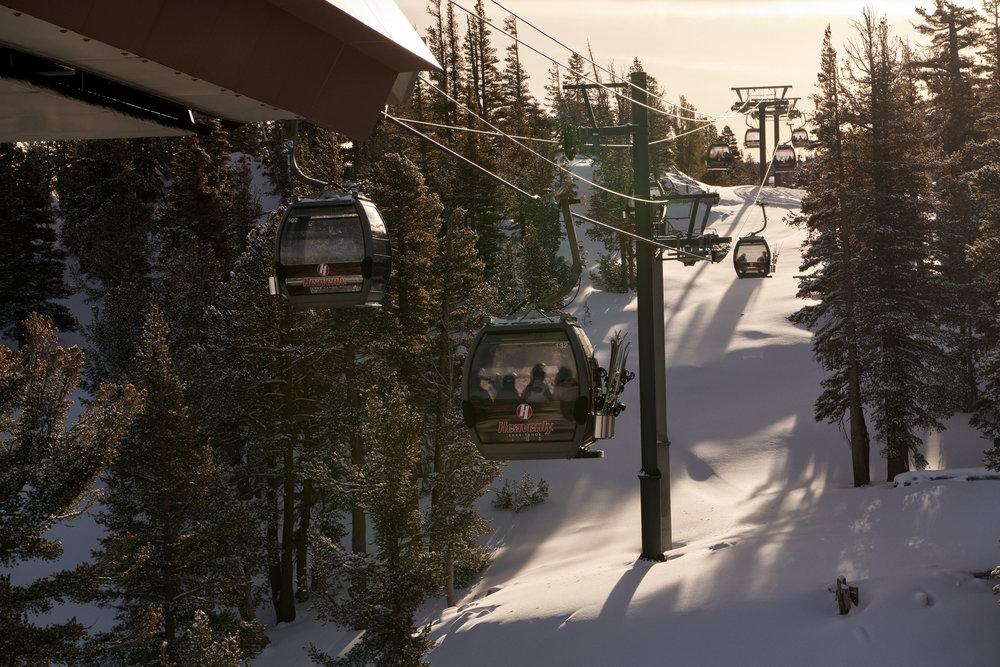 Tahoe-1801-Wojack-3022.jpg