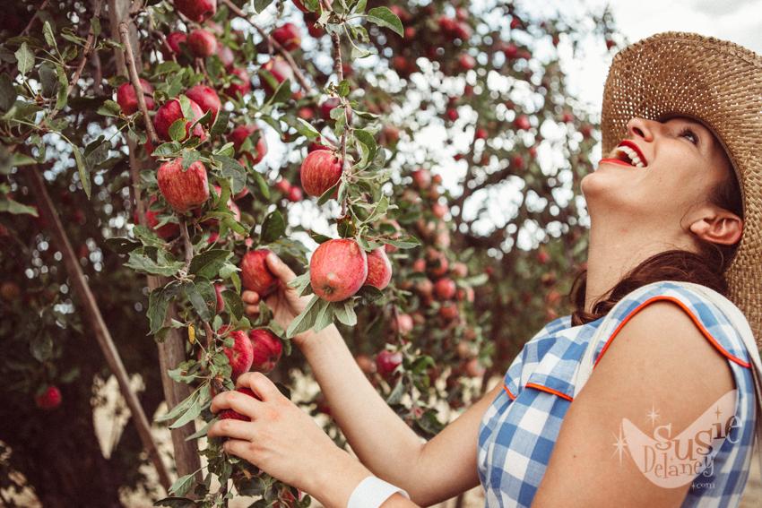 U-pick Fruit -