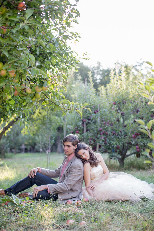 01 apple orchard-01 apple orchard-0142.jpg