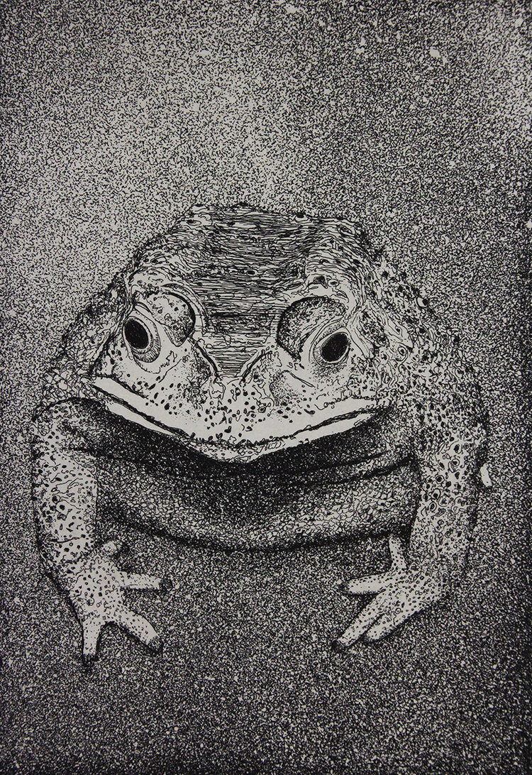 CP14 Intaglio Print by Evan Summer