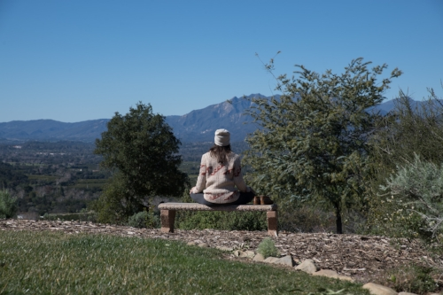 Photo X Ginnie Coleman. Location X Meditation Mount
