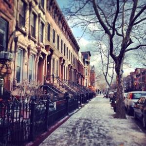 Hali's Brooklyn, New York street