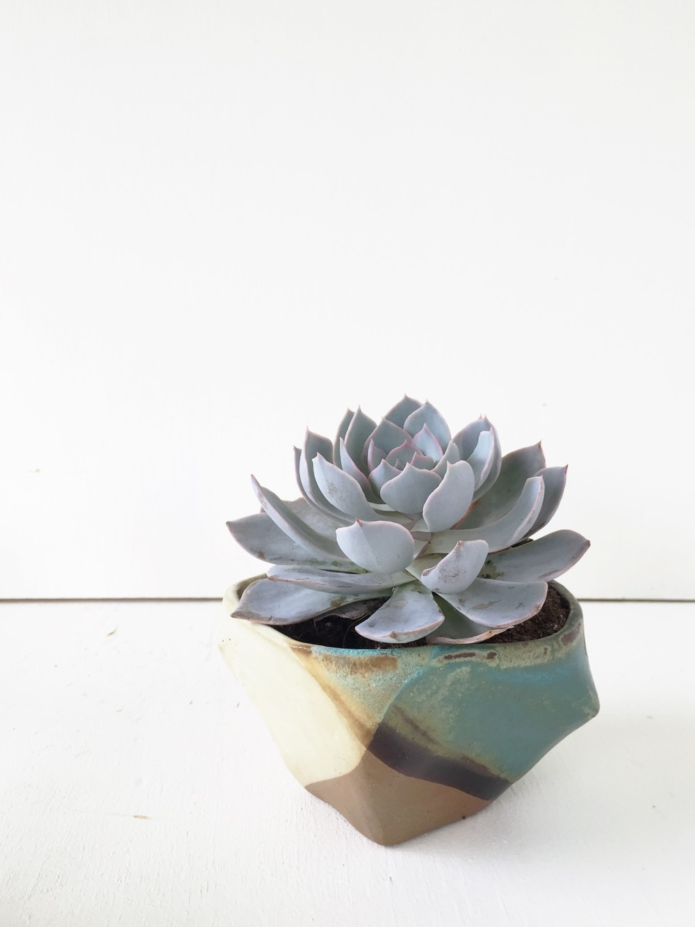 My forms are often inspired by plants! What is your thing?