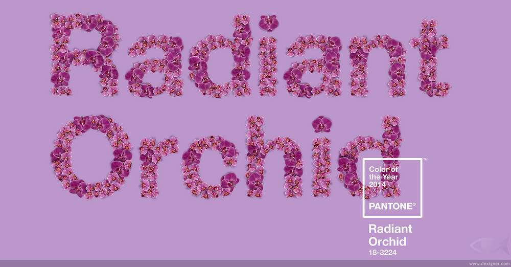 Radiant_Orchid_PANTONE_2014_Color_of_the_Year_03_gallery.jpg