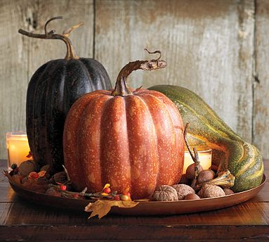 pumpkinstilllife