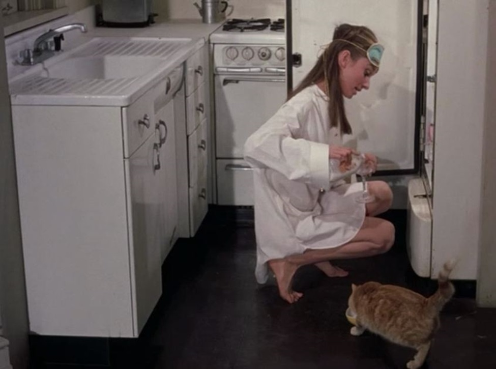 Breakfast at Tiffany's Cat 02.jpg