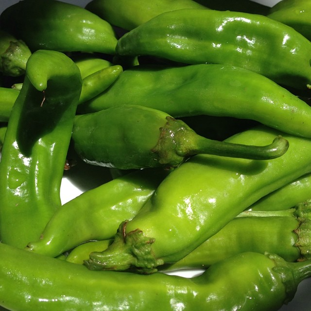 "Ahh New Mexico green chile/ "" Big Jim's"" from our garden"