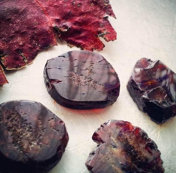 Garnet slices and a pressed fall leaf