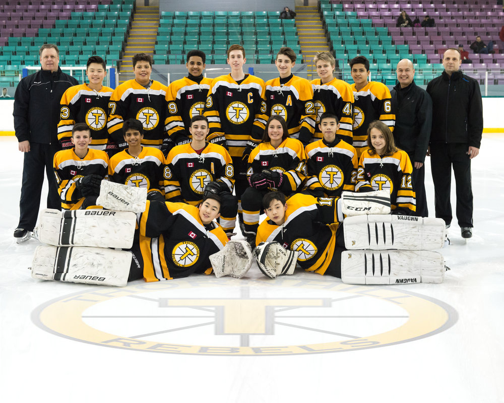 01-20-2017 - Thornhill Rebels Team Photo with logo.jpg