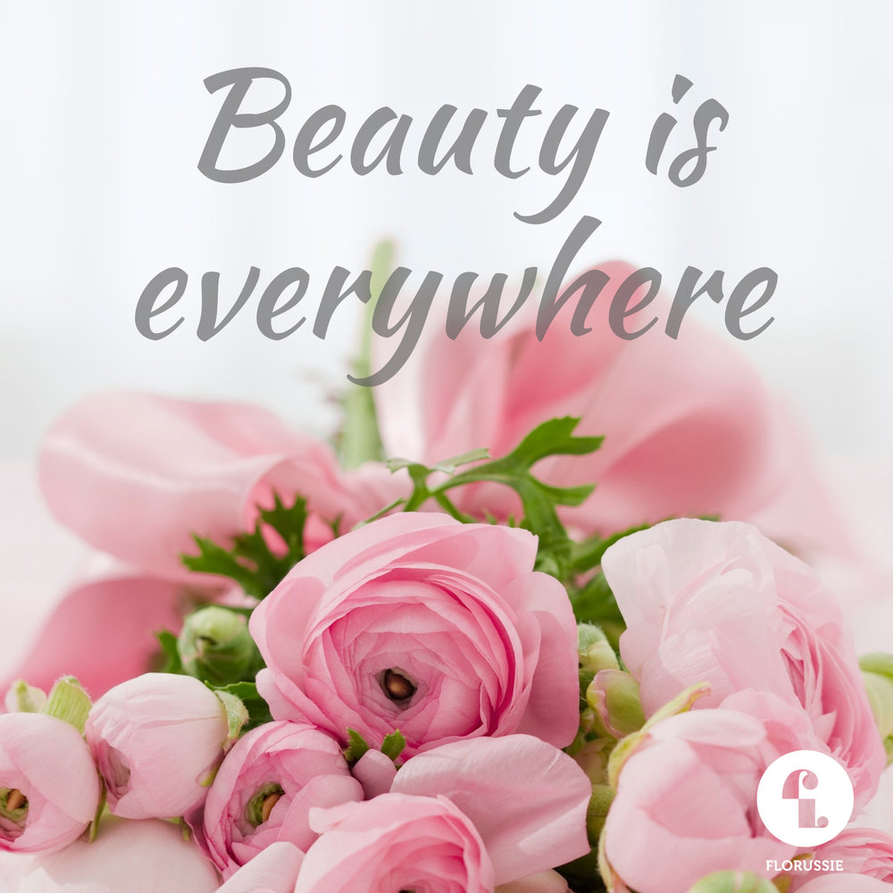 Beauty is everywhere.