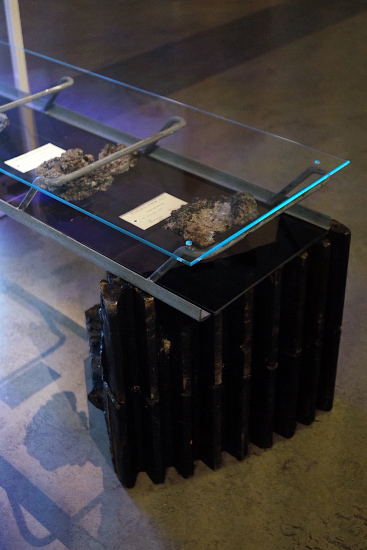 jsigharas-arv-exhibition-36.JPG