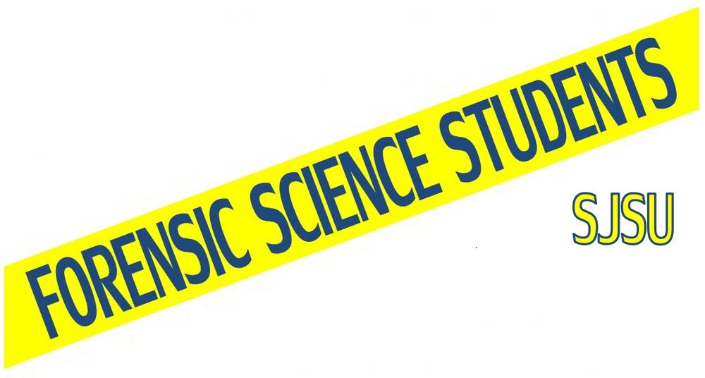 FSS Logo - Navy.jpg