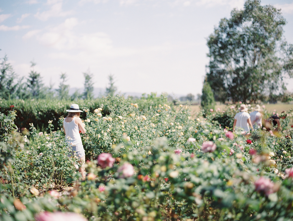 Oh Flora Getaway by Kylie Mills Photography-14.jpg