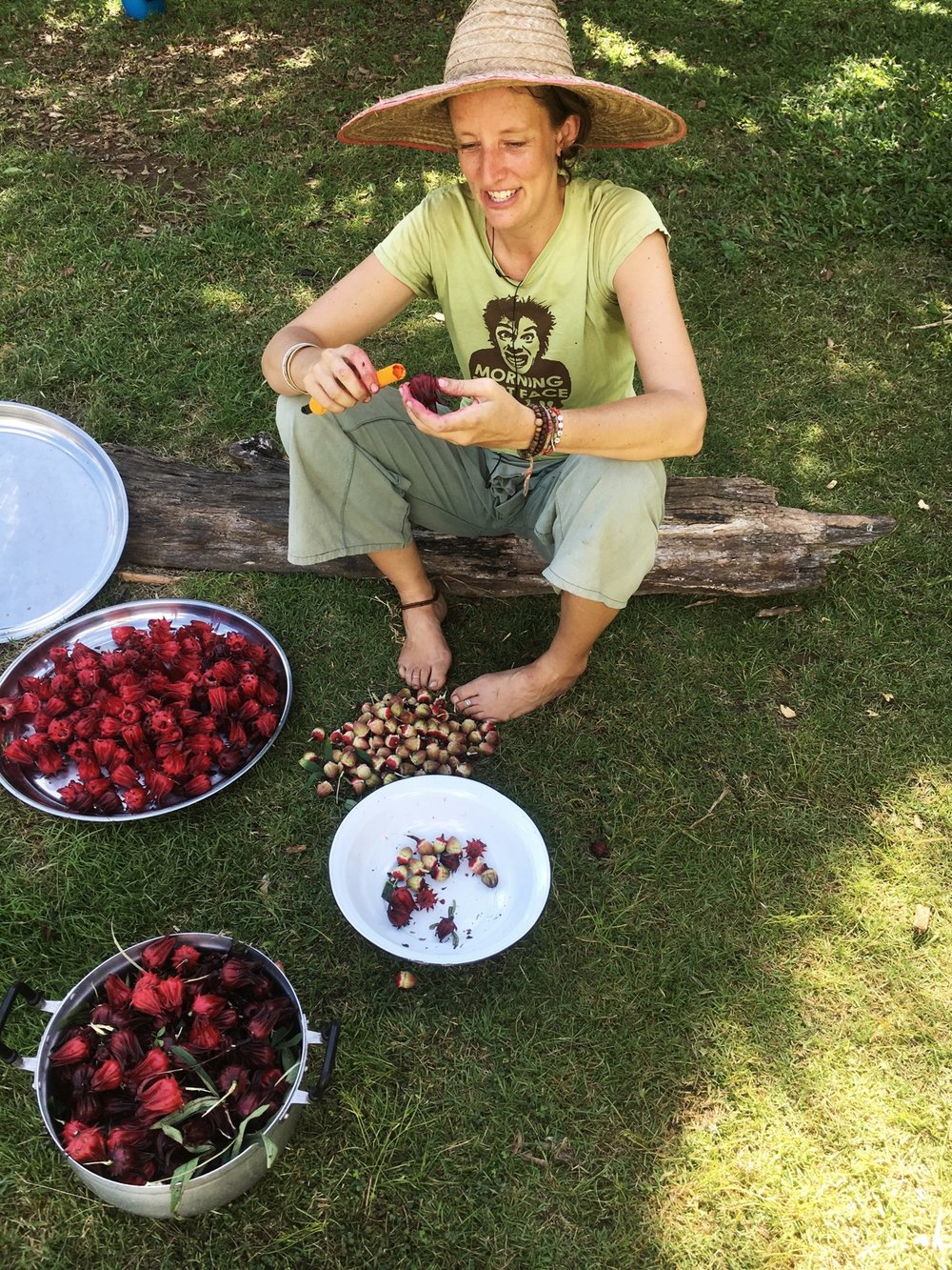 Ro in the garden harvesting miraculous fruit that came from tiny seeds.