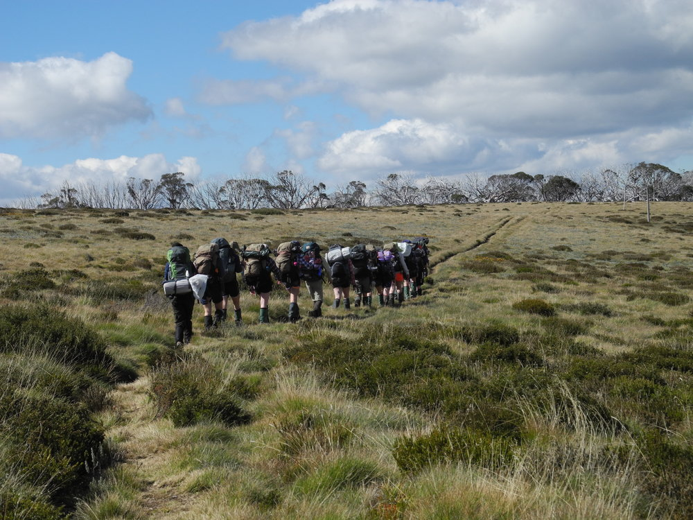 Bushwalk Bogong High Plains Girls 427 Pic by Mira.JPG