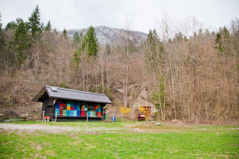 Beehive house, Slovenia
