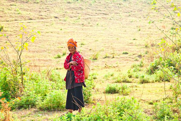 Myanmar-1491.jpg