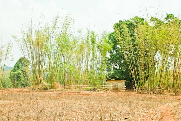 Myanmar-1581.jpg