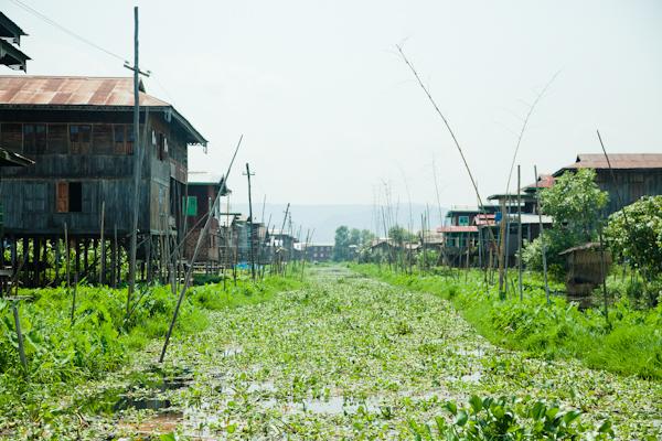 Myanmar-1825.jpg