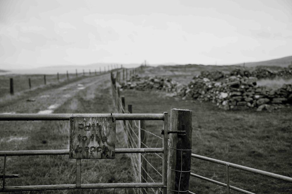 Shetland-7.jpg