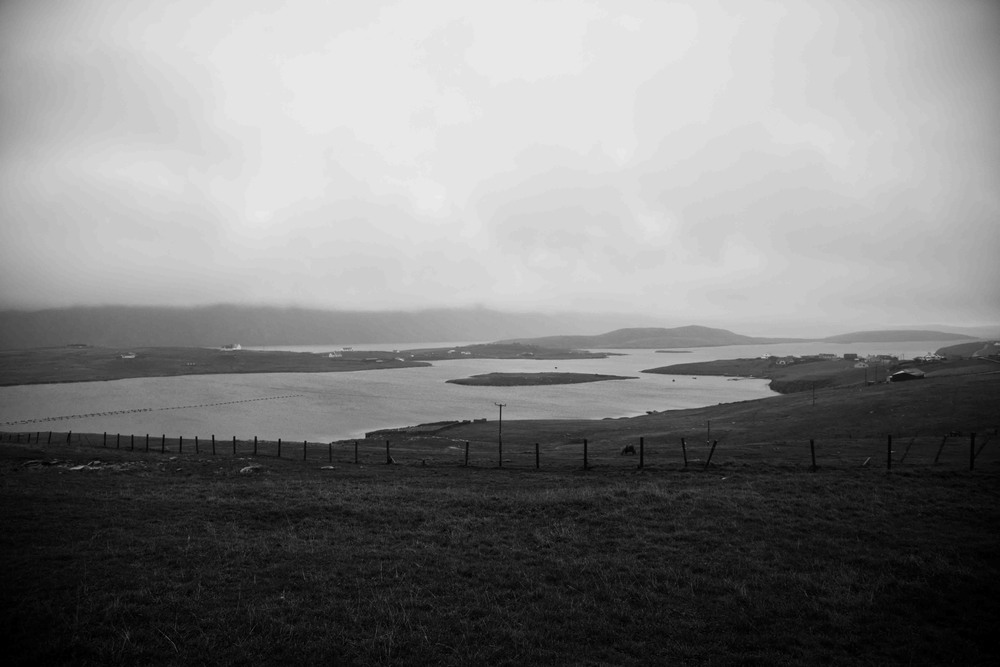 Shetland-2.jpg