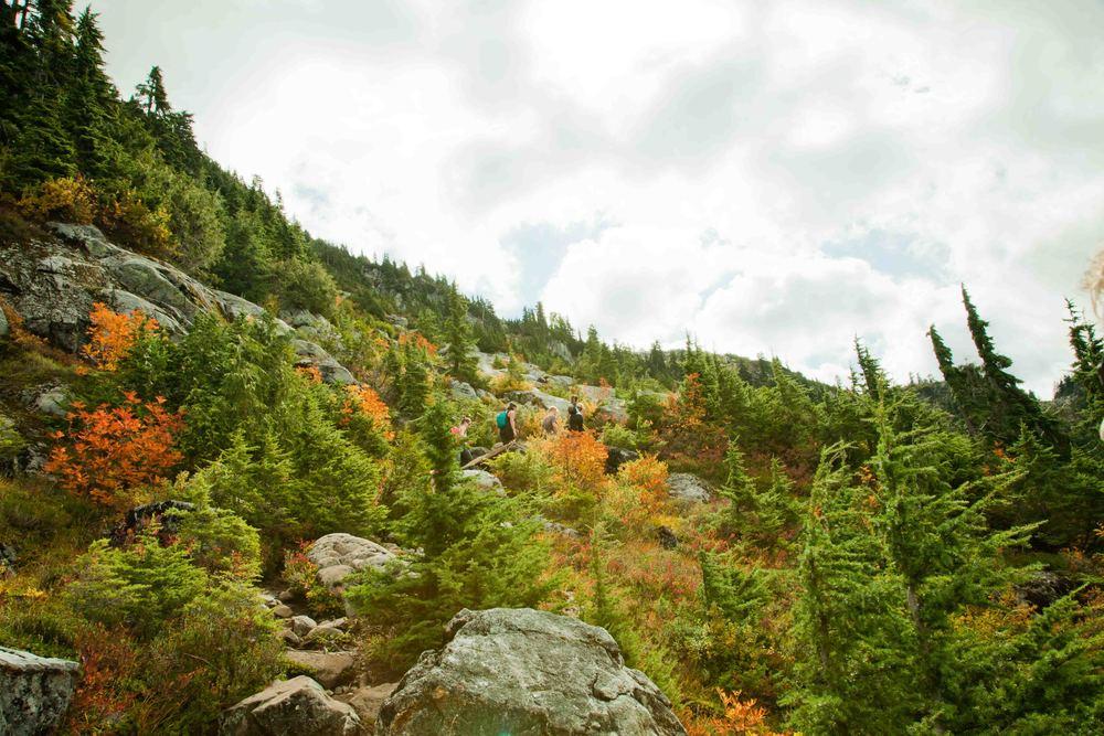 LR Lions Trail-78.jpg