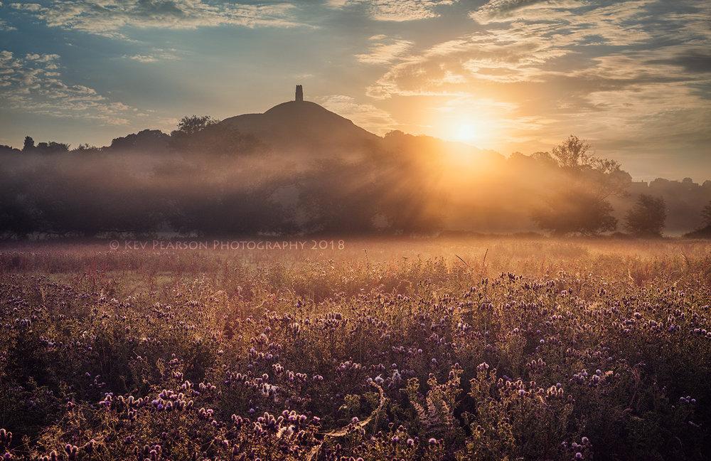 Wild Sunrise -