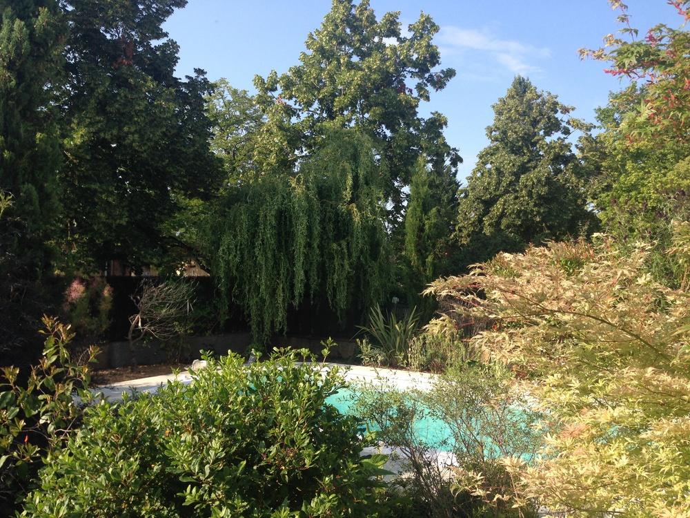 Pool-Garden.jpg