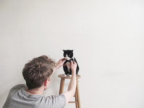 cuteboyswithcats :     via  sunkentreasure