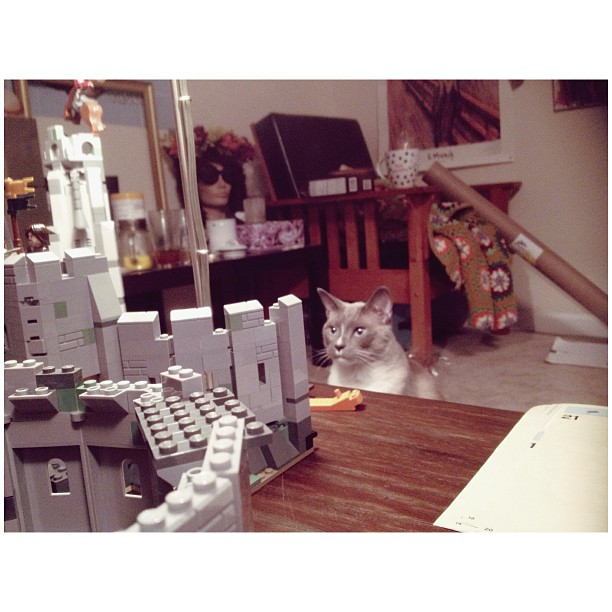 #lego inspector #cat approves.