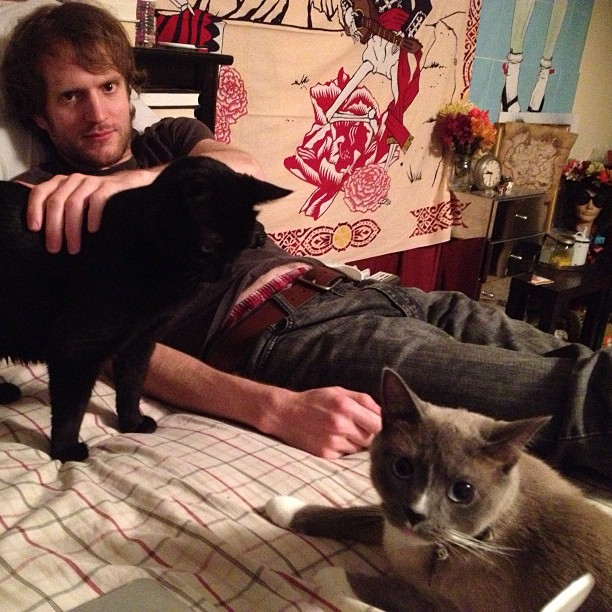 Surrounded by #cats