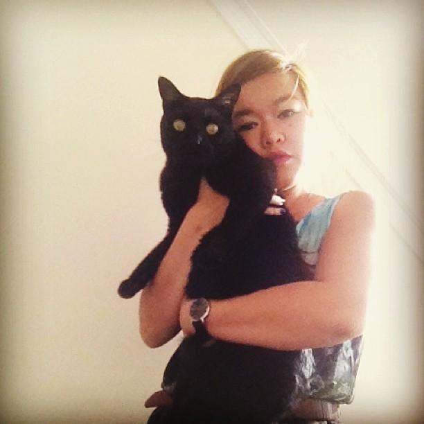 My big ole #kitty #cat
