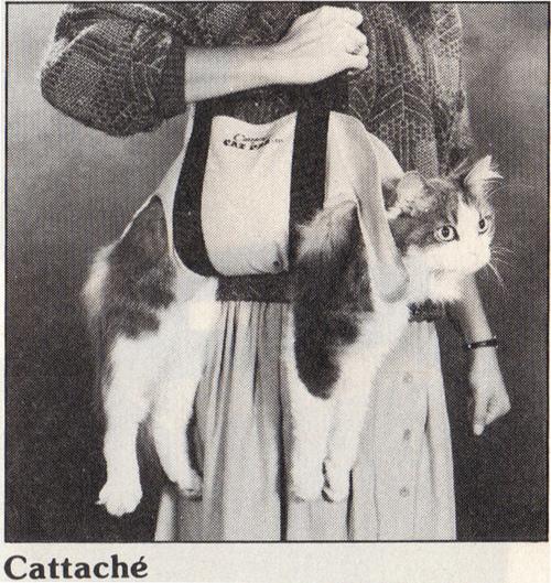 fuckyeahfatcats :     Cat bag