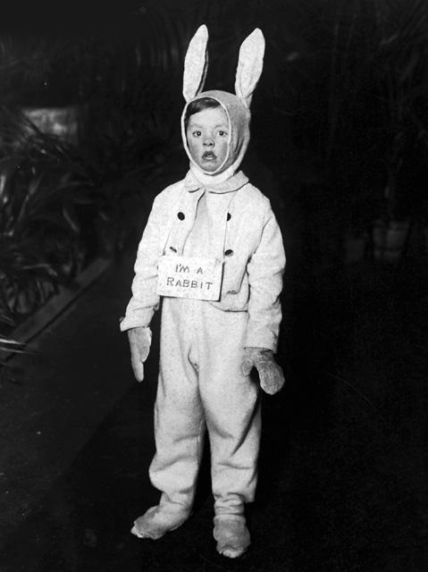 babydeer :      phantomoftheradio :      leiris :   he's a rabbit