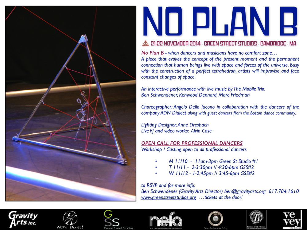 No Plan B - FinalFlyer BACK INFO.jpg