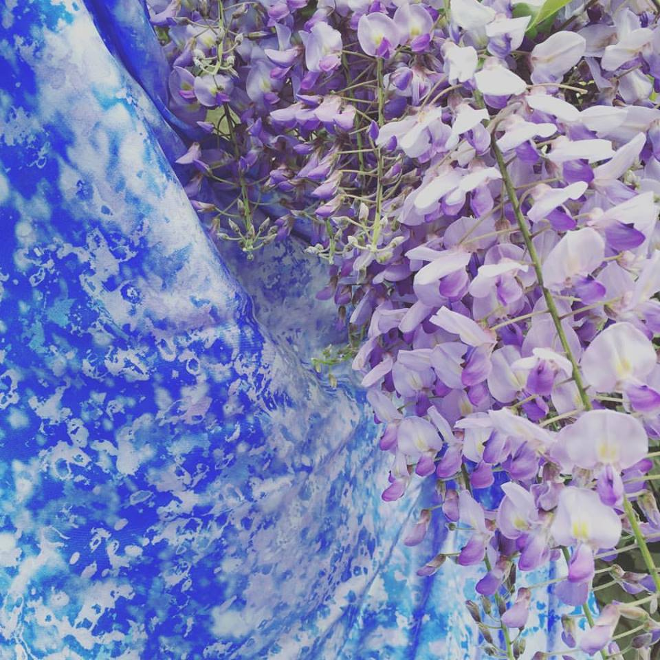 Spring Blooms mixed amongst the wisteria.