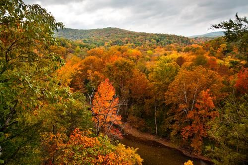 The Ozarks, Missouri (photo via Yahoo)